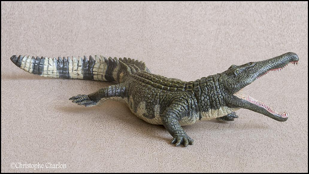 "Kinto Favorite ""Redondasaurus vs Coelophysis"" set walkaround by Kikimalou Kinto_favorite_Fukui_Museum_Redondasaurus_2"