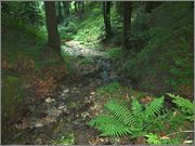 Sljeme - rudnici grofa Cariona P8052284