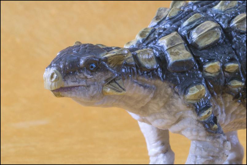 The 2013 KINTO FAVORITE Ankylosaurus walkaround. Ankylosaurus_Kinto_Favorite_10