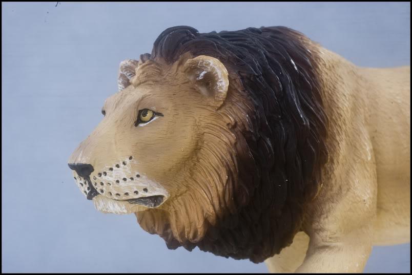 MOJO : The lions family walkaround review by Kikimalou DSC_-1952