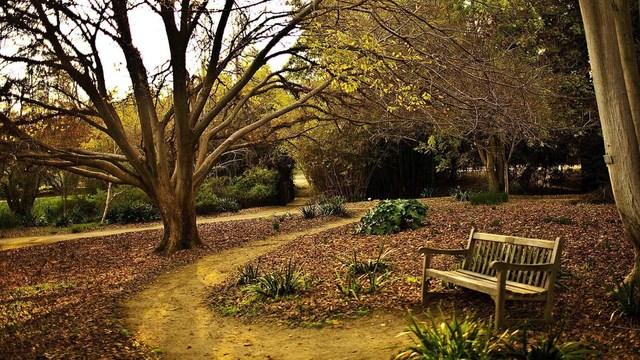 klupa nekoga čeka - Page 4 Beautiful_view_of_park_bench