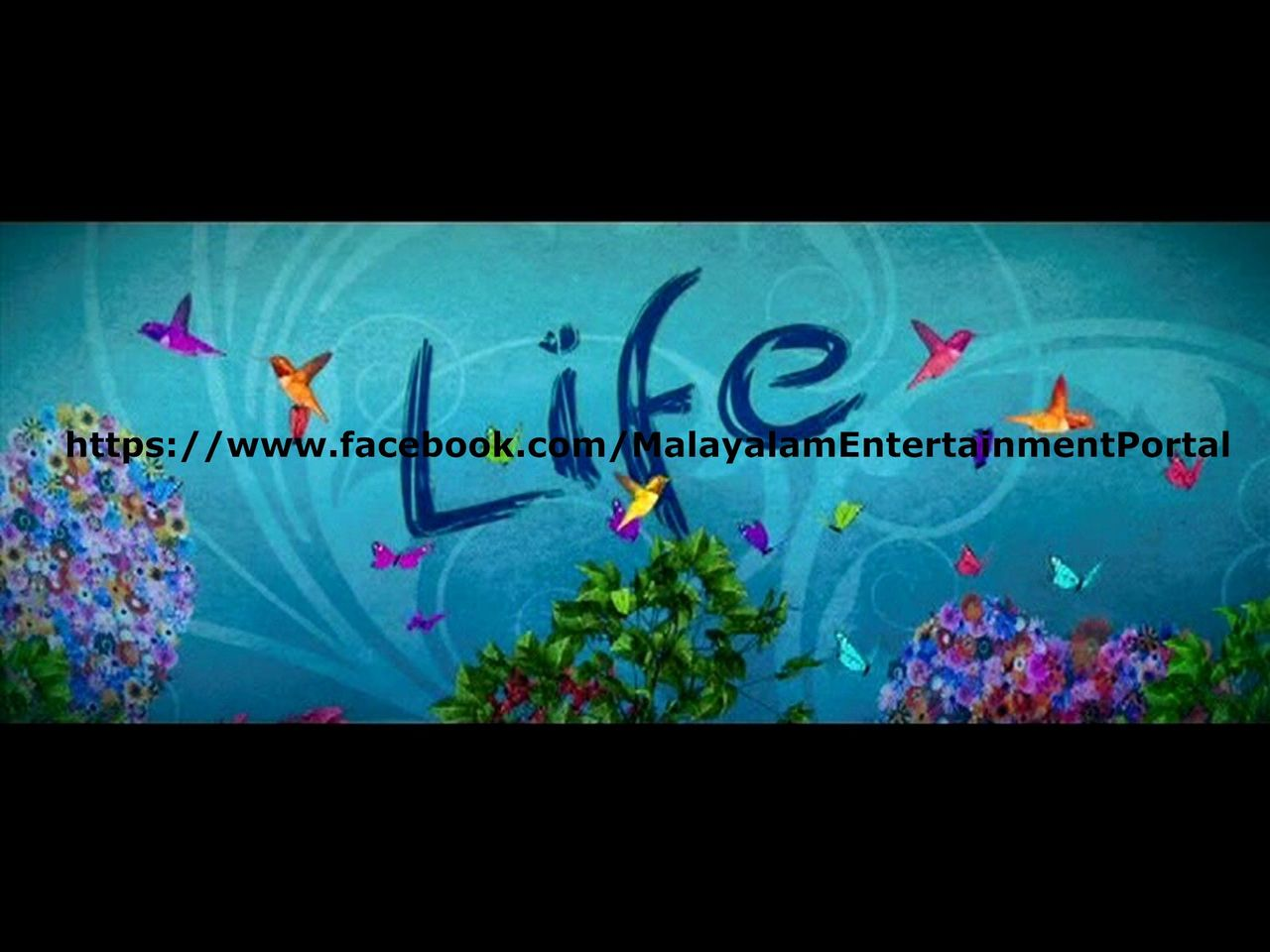 Life DVD Screenshots Bscap0000