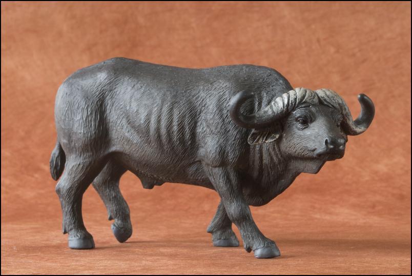 Kikimalou's 2012 MÖJO FUN cape buffalo walkaround Cape_Buffalo_Mojo_Fun-12