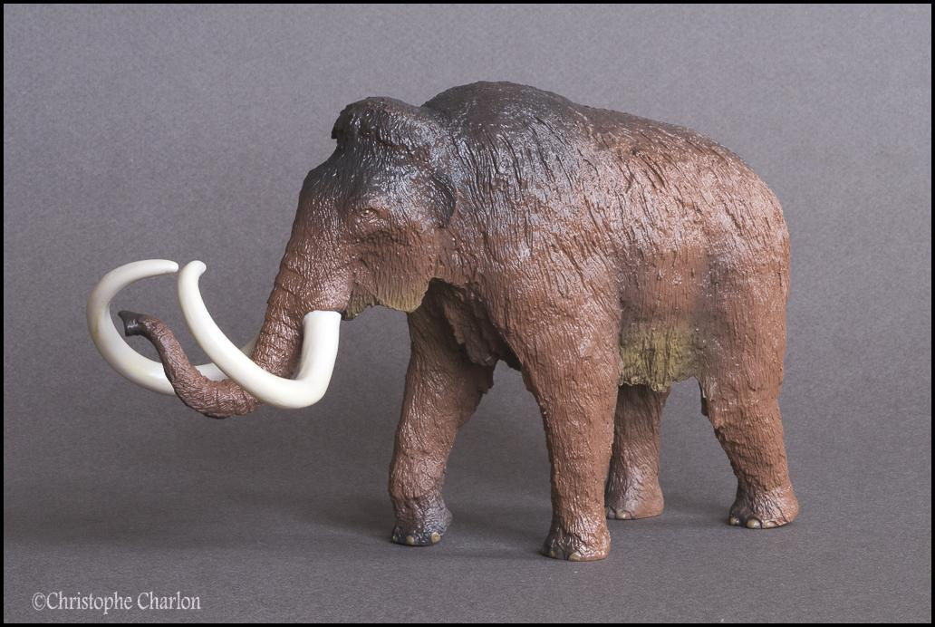 Kinto Favorite FP-002 Wooly Mammoth: A walkaround by Kikimalou Kinto_Favorite_FP-002_Woolly_Mammoth_6.jpg_origi