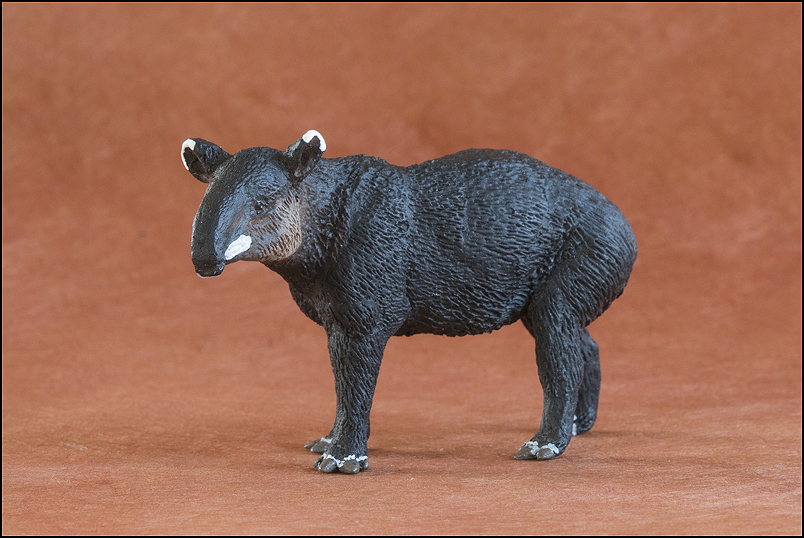 Ana's mountain tapir : A walkaround by Kikimalou Mountaintapir_DOBROWOSLKA-11