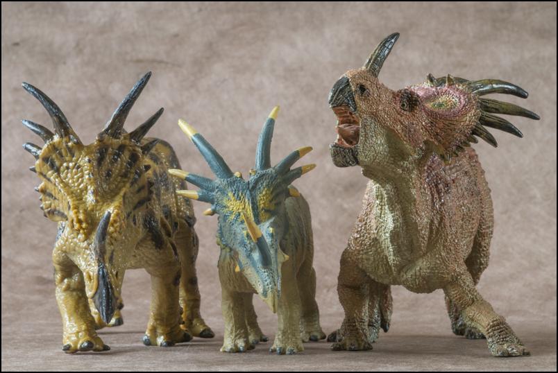 The 2013 KINTO FAVORITE Styracosaurus walkaround. Styracosaurus_Kinto_Favorite-16