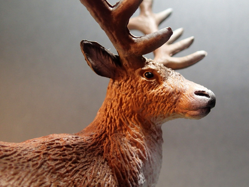 A walkaround  of Bullyland Red Deer, deLuxe size.  Bul_Lux_Red_Deer_Face2_zpsqoa8ecat