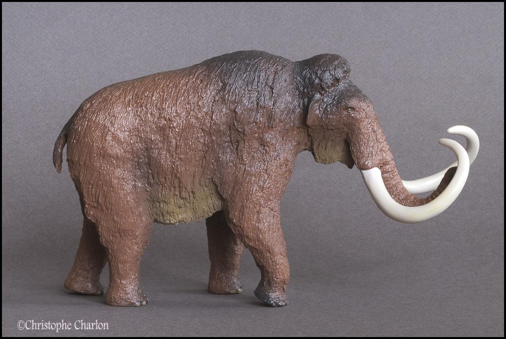 Kinto Favorite FP-002 Wooly Mammoth: A walkaround by Kikimalou Kinto_Favorite_FP-002_Woolly_Mammoth_1.jpg_origi