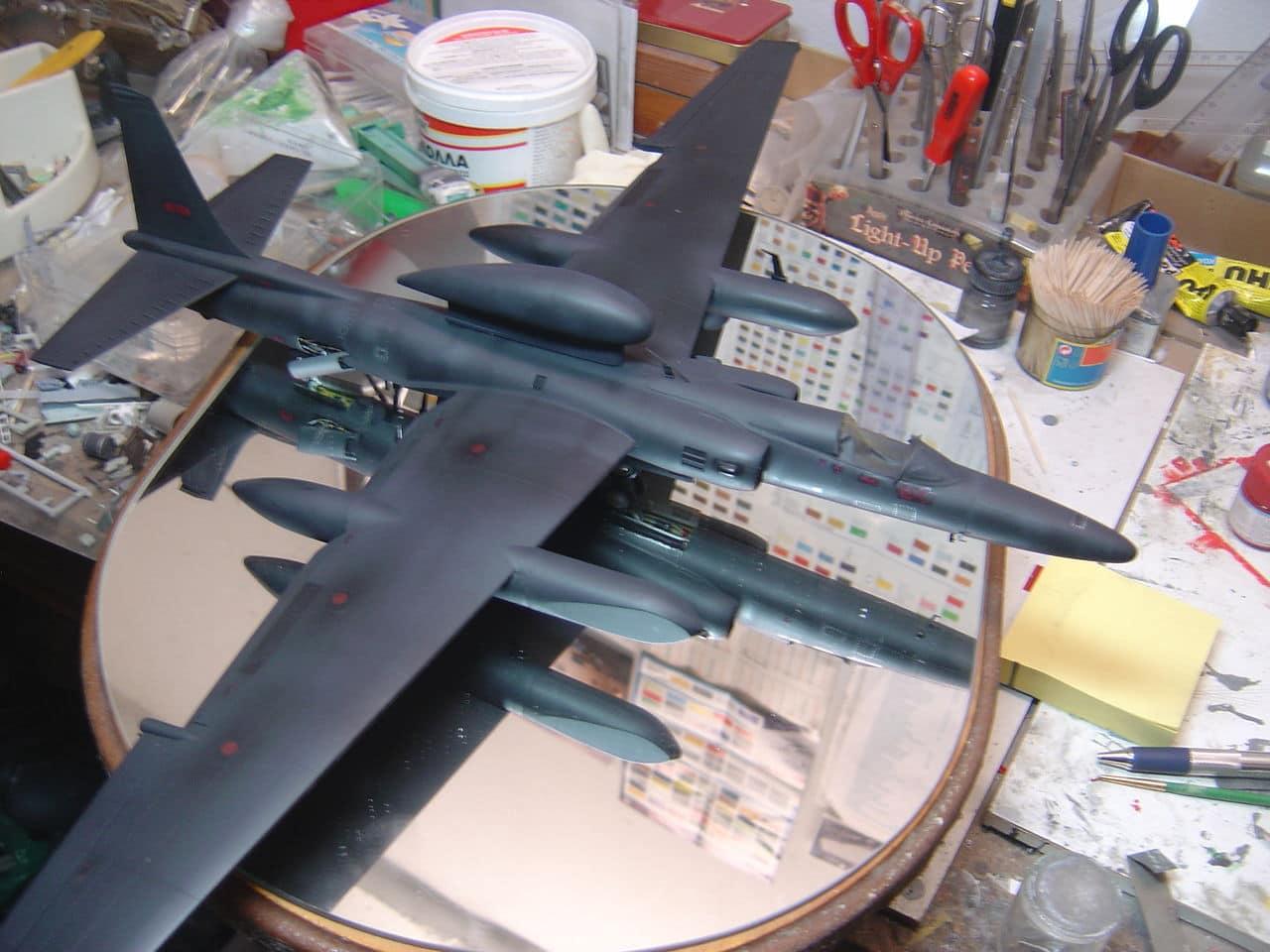 U-2  (οχι το συγκροτημα ρεεε...) R  Senior Span. - Σελίδα 3 DSC02862