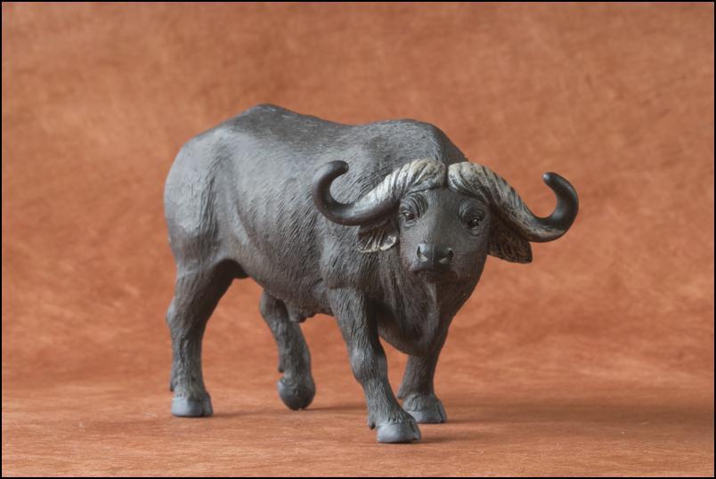 Kikimalou's 2012 MÖJO FUN cape buffalo walkaround Cape_Buffalo_Mojo_Fun-11