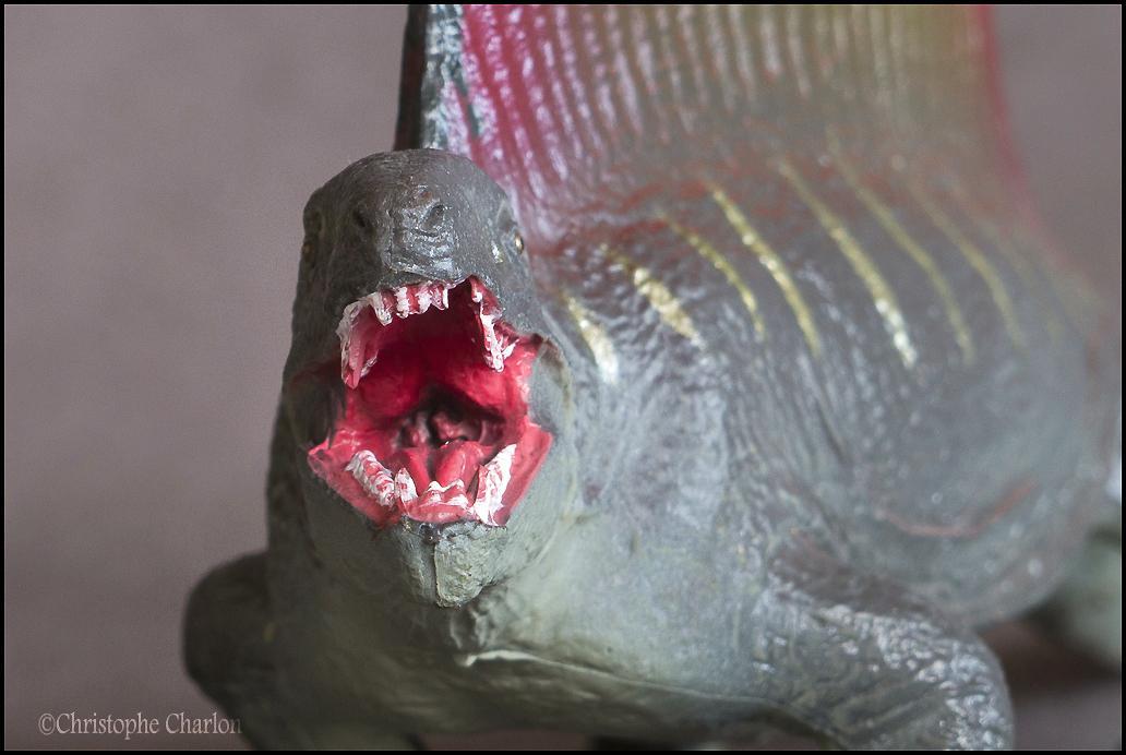 Favorite Prehistoric Life Softmodel Dimetrodon: A walkaround by Kikimalou Kinto_Favorite_Dimetrodon_12