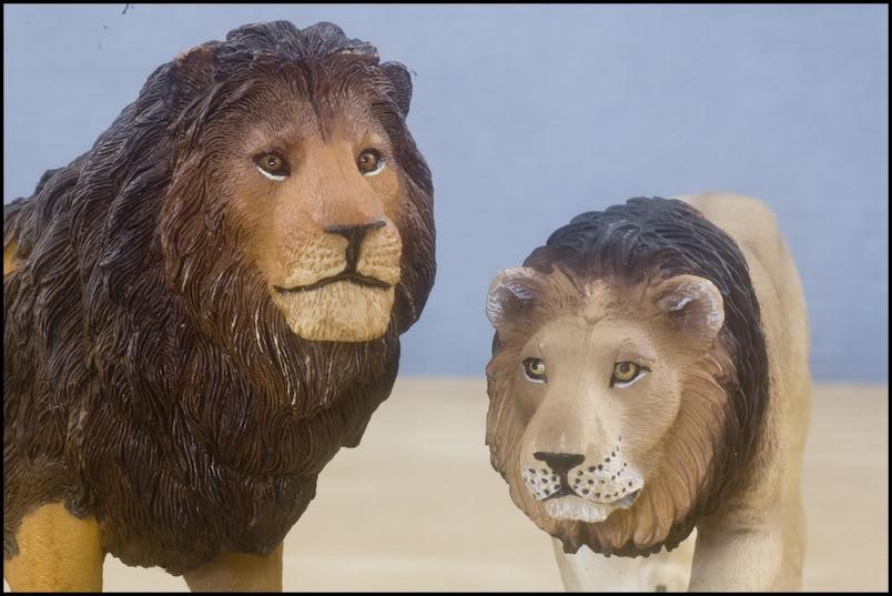 MOJO : The lions family walkaround review by Kikimalou DSC_-1958