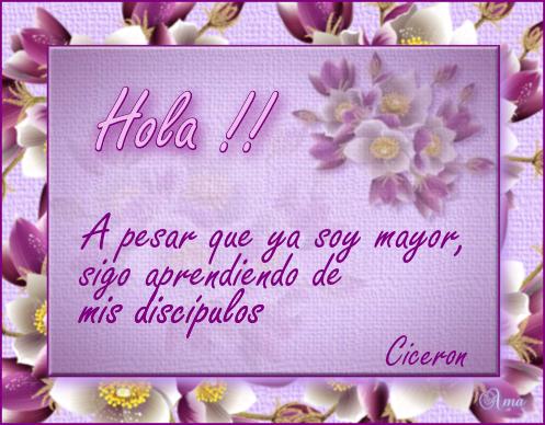Florido con Frase HOLA