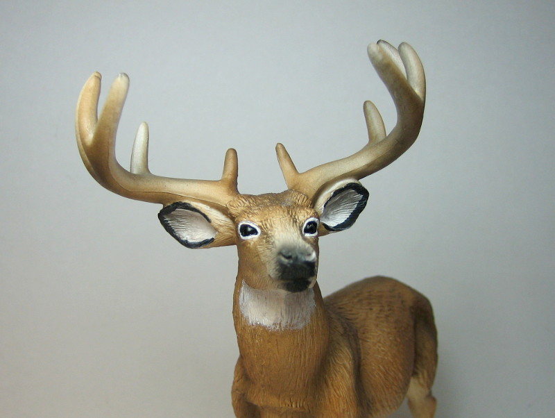 The new white tailed deer, and some comparisons to his retired brother. Hjort_zps90370d32