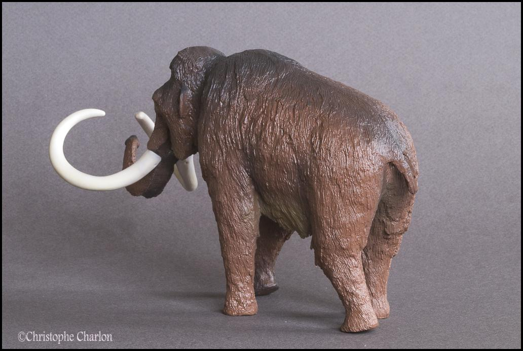 Kinto Favorite FP-002 Wooly Mammoth: A walkaround by Kikimalou Kinto_Favorite_FP-002_Woolly_Mammoth_4.jpg_origi