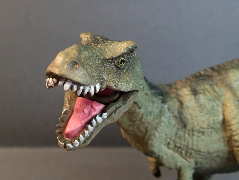Two new medium sized Bullyland  Museum Line models 2016 : T-Rex and Liopleurodon, walk arounds Bully61448_Mouth_Open_zpsqusjkm0w