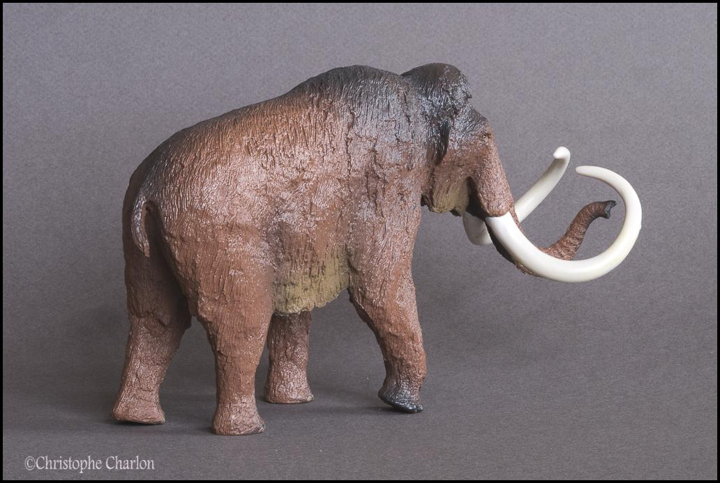 Kinto Favorite FP-002 Wooly Mammoth: A walkaround by Kikimalou Kinto_Favorite_FP-002_Woolly_Mammoth_2.jpg_origi