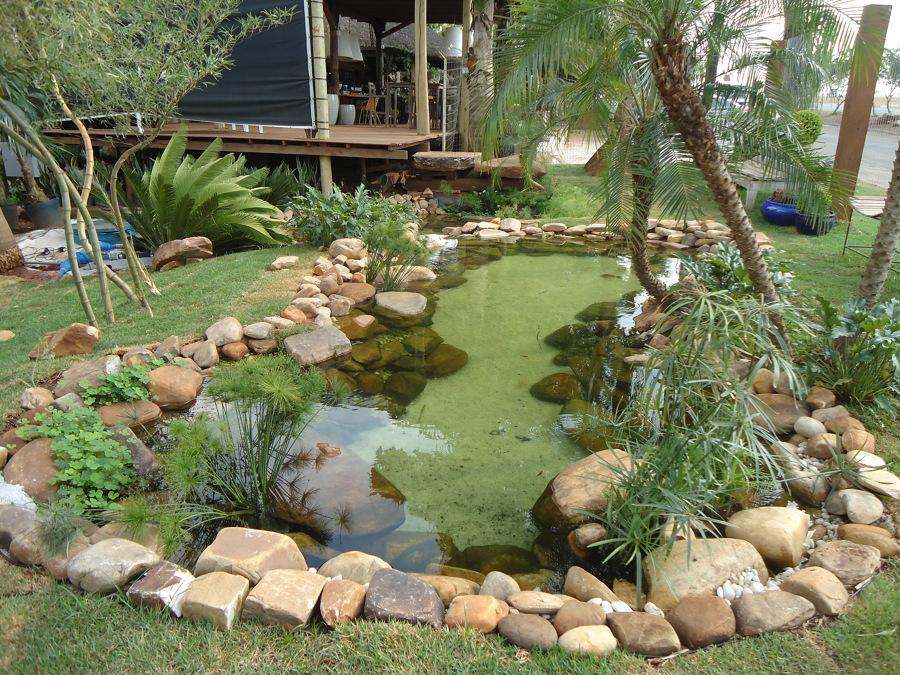 10 lindos lagos Ornamentais Projetos_de_lagos_ornamentais_523189