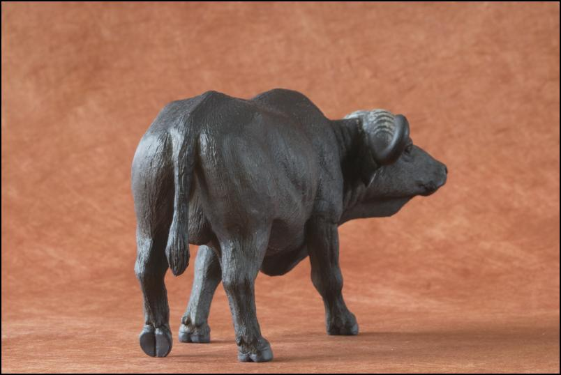 Kikimalou's 2012 MÖJO FUN cape buffalo walkaround Cape_Buffalo_Mojo_Fun-6
