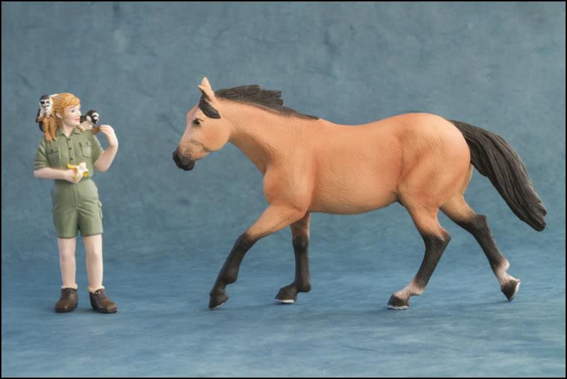 The MOJO FUN 2012 Buckskin Quarter horse walkaround by Kikimalou Buckskin_Quarter_horse_1