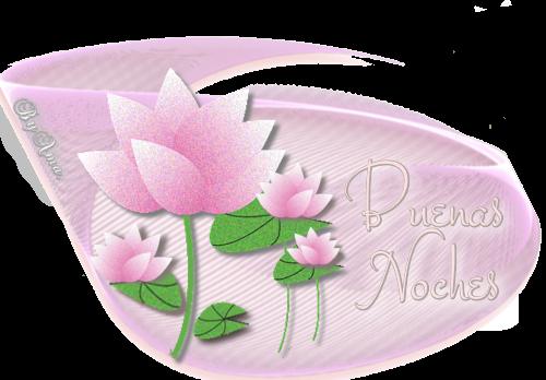Lotos en Rosa NOCHES