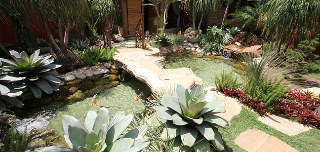 10 lindos lagos Ornamentais F19c8c_5fef069bbdc3013b48b7321eb8abe89b_jpg_srz