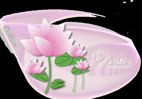 Lotos en Rosa BESITOS