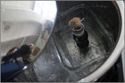 Récupération de touffes de poils ? IMG_7758