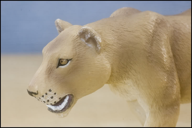 MOJO : The lions family walkaround review by Kikimalou Mojo_lions_1_11