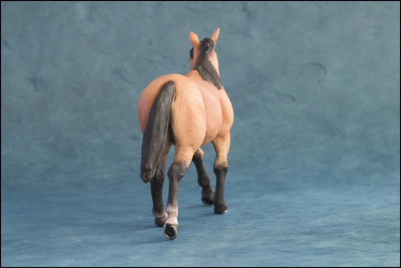 The MOJO FUN 2012 Buckskin Quarter horse walkaround by Kikimalou Buckskin_Quarter_horse_8