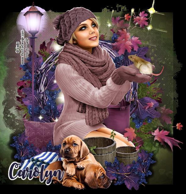 Carolyn's July - September Pick Up Thread Carolyn-2018_Coats_Season
