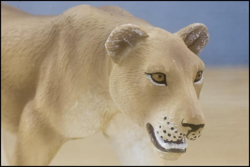 MOJO : The lions family walkaround review by Kikimalou Mojo_lions_1_10