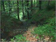 Sljeme - rudnici grofa Cariona P8052283
