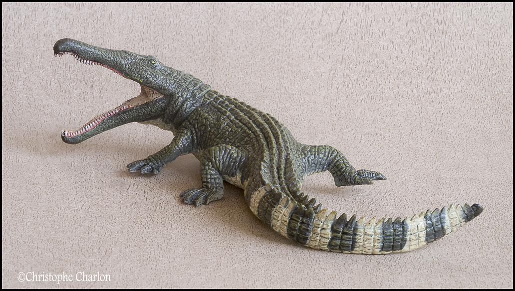 "Kinto Favorite ""Redondasaurus vs Coelophysis"" set walkaround by Kikimalou Kinto_favorite_Fukui_Museum_Redondasaurus_3"