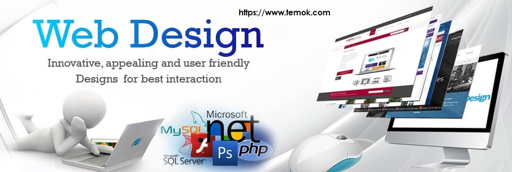 TEMOK Offers Quality Web Designing Service With Additional Features Starting at $175 Only Webdesign_Banner