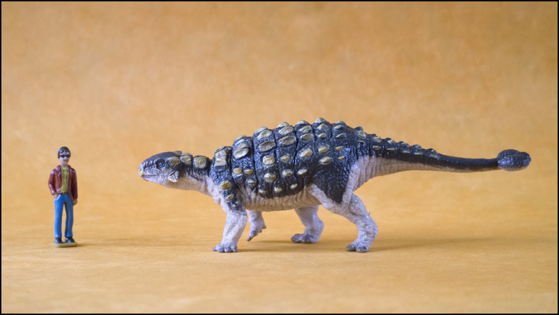 The 2013 KINTO FAVORITE Ankylosaurus walkaround. Ankylosaurus_Kinto_Favorite