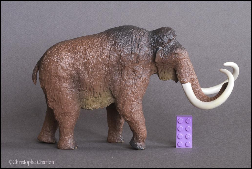 Kinto Favorite FP-002 Wooly Mammoth: A walkaround by Kikimalou Kinto_Favorite_FP-002_Woolly_Mammoth_10.jpg_orig