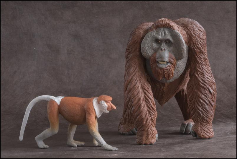 The MOJÖ FUN Proboscis monkey: A walkaround by Kikimalou Proboscismonkey_MOJO-31.jpg_original