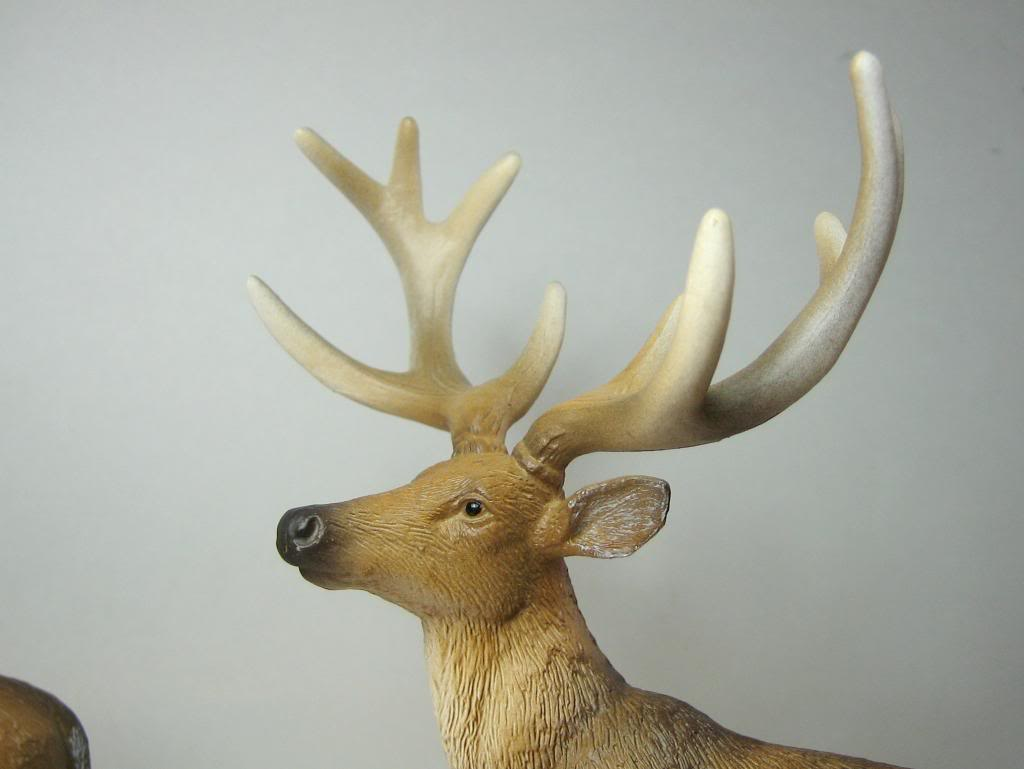 The new white tailed deer, and some comparisons to his retired brother. IMG_7341_zpsbbcfdd7e