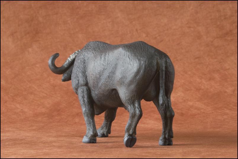 Kikimalou's 2012 MÖJO FUN cape buffalo walkaround Cape_Buffalo_Mojo_Fun-7