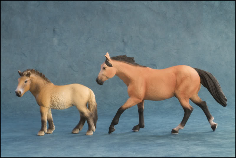 The MOJO FUN 2012 Buckskin Quarter horse walkaround by Kikimalou Buckskin_Quarter_horse_15