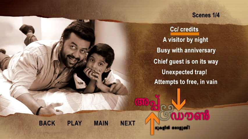 New Malayalam Blu Ray/DVD/ VCD Releases - Page 5 Vlcsnap_2013_09_11_19h19m16s172