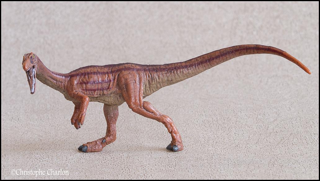 "Kinto Favorite ""Redondasaurus vs Coelophysis"" set walkaround by Kikimalou Kinto_favorite_Fukui_Museum_Coelophysis_5"
