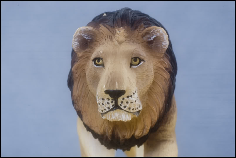 MOJO : The lions family walkaround review by Kikimalou DSC_-1953