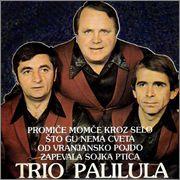 Trio Palilula - Kolekcija PREDNJA