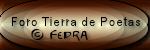 Mi diosa, mi condena Logo