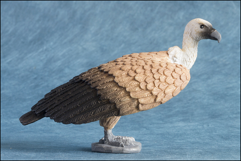 Mojo Griffon vulture: A walkaround by kikimalou Mojo387165_Griffon_Vulture-9