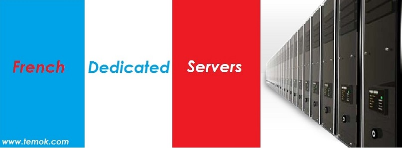 Starting at $50/Month TEMOK Offers French Dedicated Servers With Full Root Access France_Dedicated_Servers