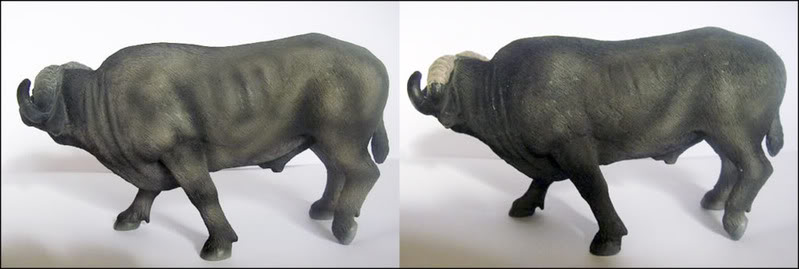 MOJO need your help to choose a Cape buffalo Capeversion17-_Modifier