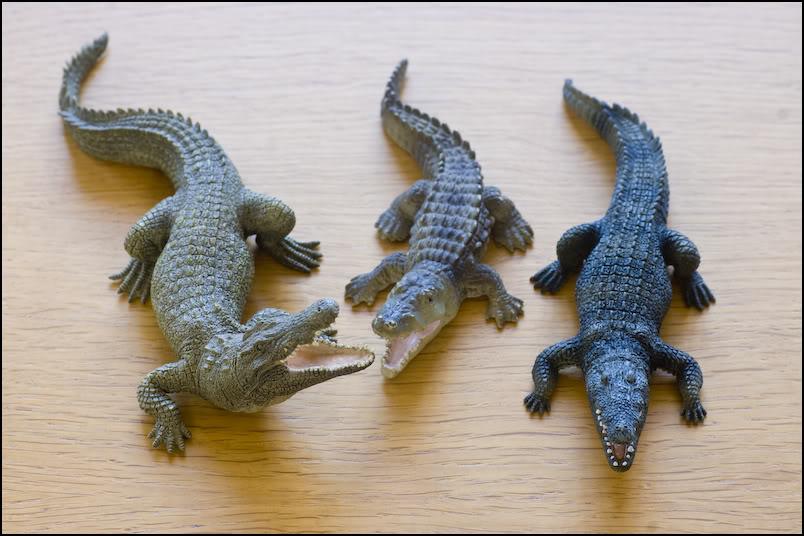 The 2012 MOJO FUN Nile crocodile walkaround by Kikimalou DSC_3988